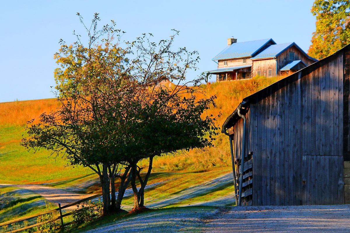 IMG_4589-benedict-haid-farm